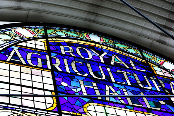 Original BDC Agricultural Hall Stained Glass Window